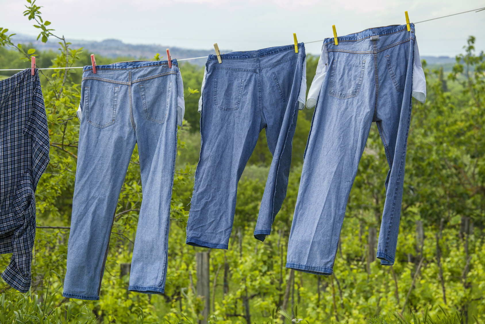 Jeans drying on a line
