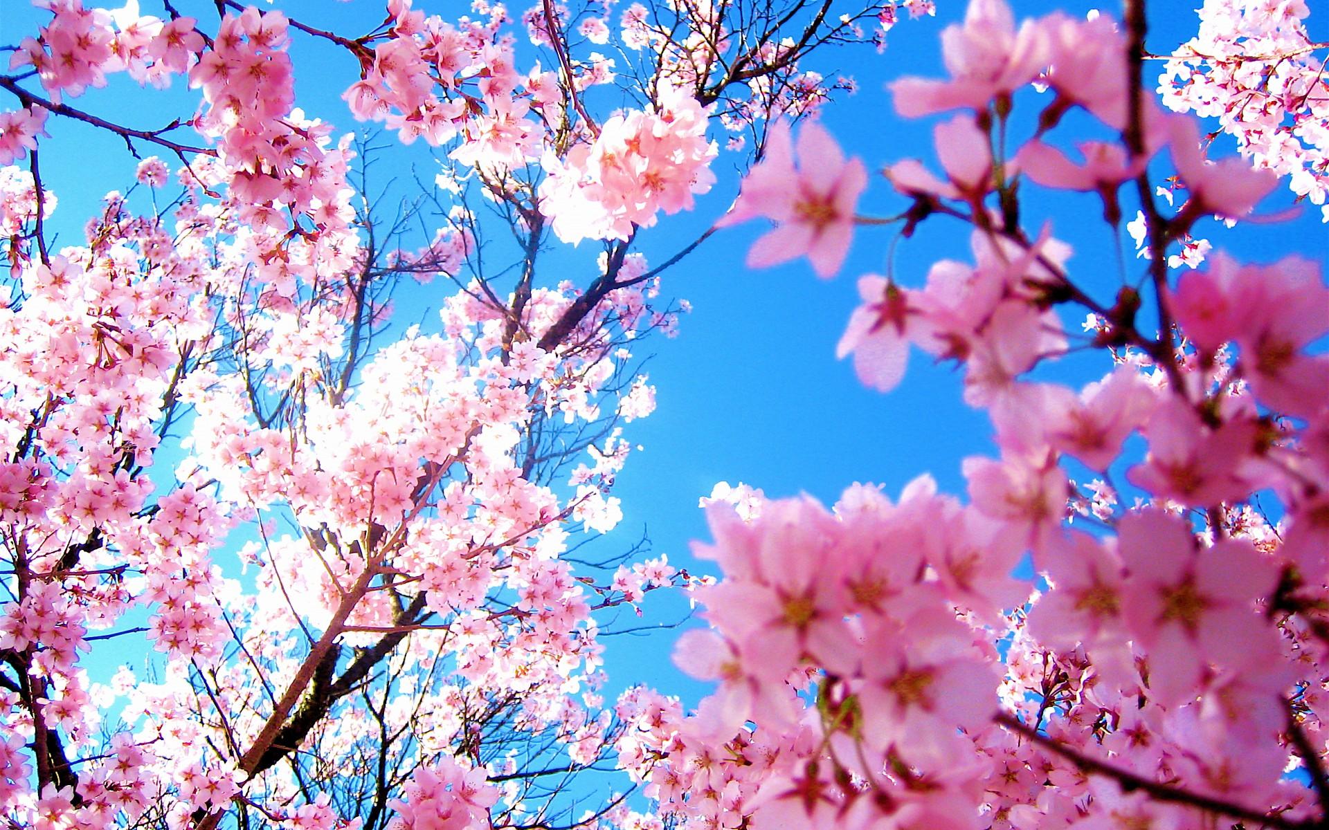 【日常使い】春のインナーたった3着で5日間着回すコーデテクニック大公開!