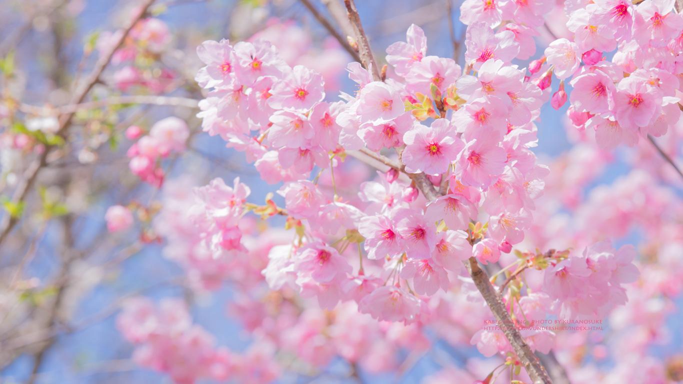2017春夏のコーデはピンク?グレー?最新コーデ集 | breezinマガジン